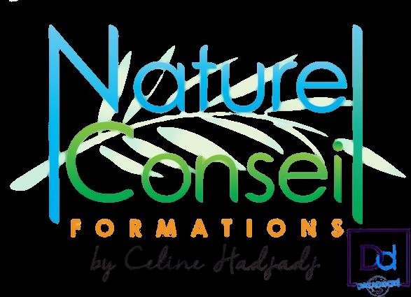 NCFormation